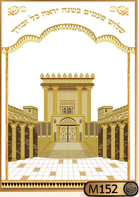 פרוכת לארון הקודש בסגנון בית המקדש M152