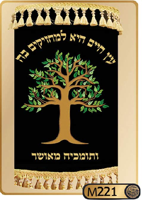 Torah Covers M221